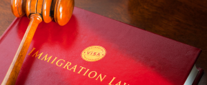 Reasons to Apply For a B1 Visa